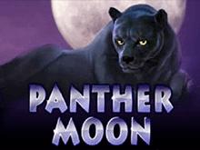 Игровой автомат Panther Moon с бонусами Вулкан